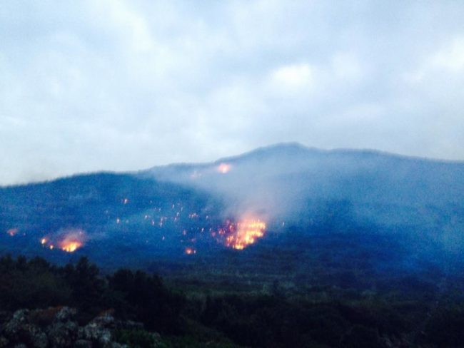 pantelleriaincendio