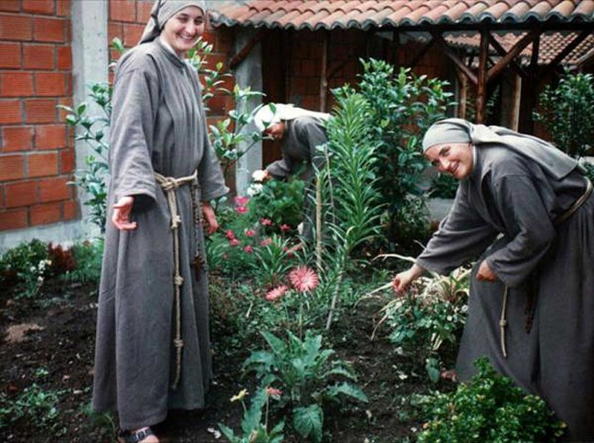 Sorelle francescane.